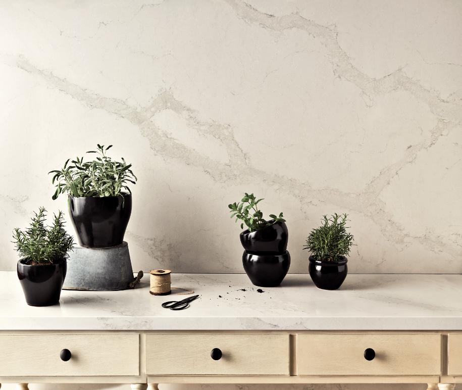 צמחי תבין בצבע ירוק עז מוסיפים נגיעות צבע למטבח הלבן. צילום: Misha Waidman לאבן קיסר, דגם 5131
