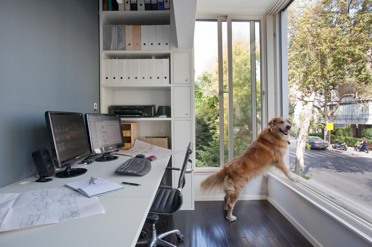 איזור עבודה בדירה תל אביבית. צילום: גידי בועז